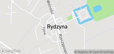 Rynek w Rydzynie – mapa
