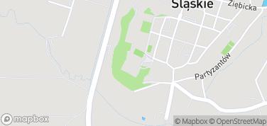 Zamek Książęcy – mapa