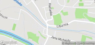Muzeum 4 Pułku Strzelców Podhalańskich w Cieszynie – mapa