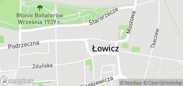 Katedra w Łowiczu – mapa
