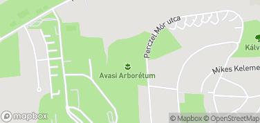 Arboretum Avasi – mapa