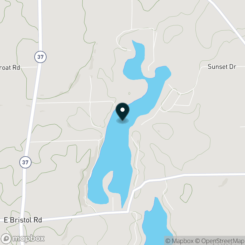 Bristol Lake (MI) Map
