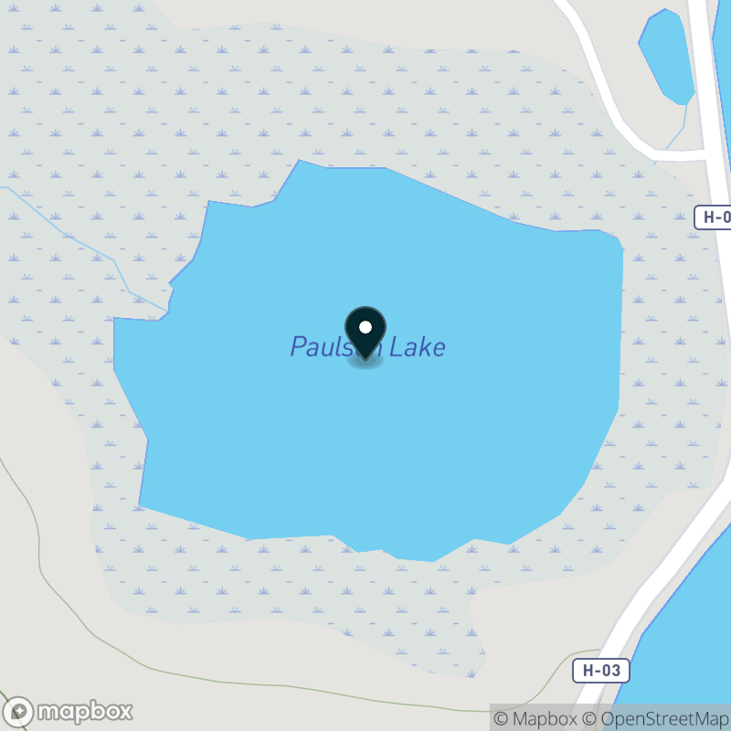 Paulson Lake (MI) Map