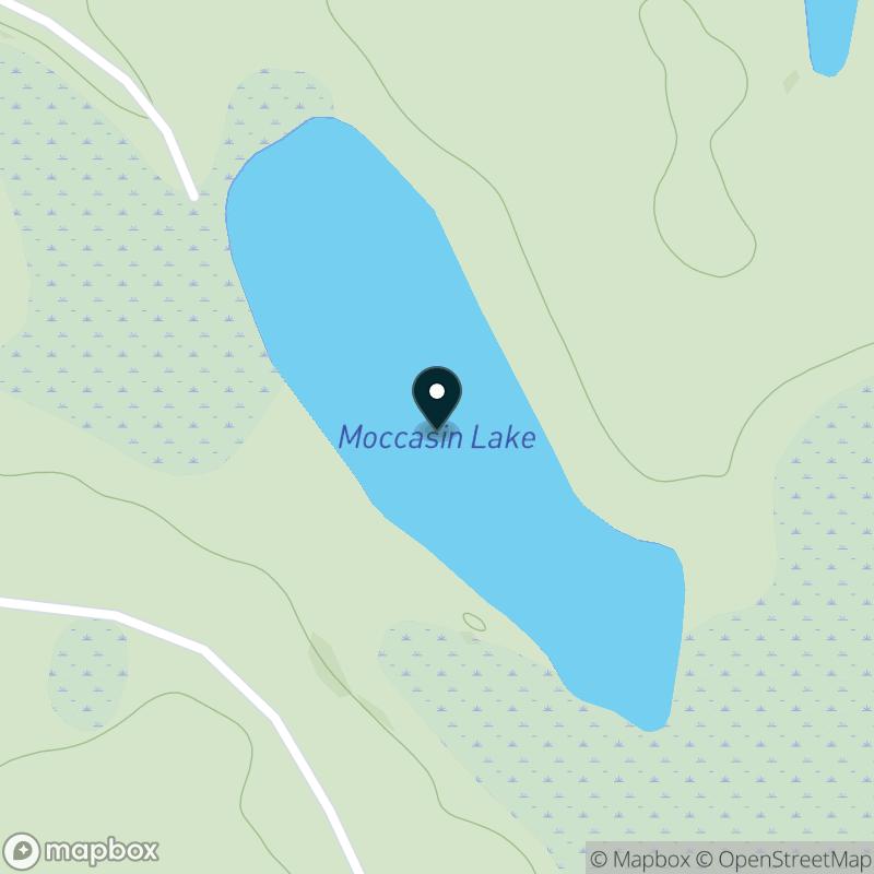 Moccasin Lake (MI) Map