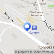 Mapa Wiechowski P. Doradztwo Konopki, Polska