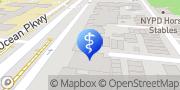 Map Igor Rubinshteyn, MD Brooklyn, United States