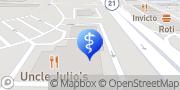 Map Amy E Flischel, MD Vernon Hills, United States
