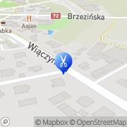 Mapa Moskalewa-Brunow Swietłana. Fryzjerstwo Łódź, Polska