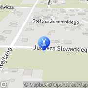 Mapa Piękna Pani Warszawa, Polska