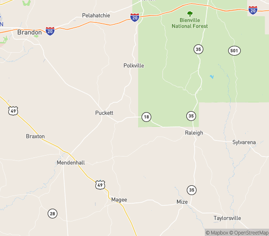 Map of Raleigh, MS