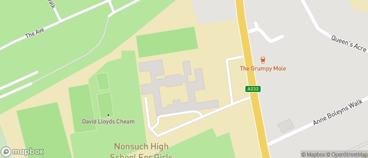 Nonsuch School for Girls