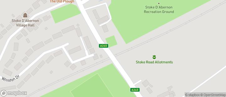Stoke D'Abernon ground