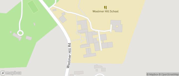 Woolmer Hill