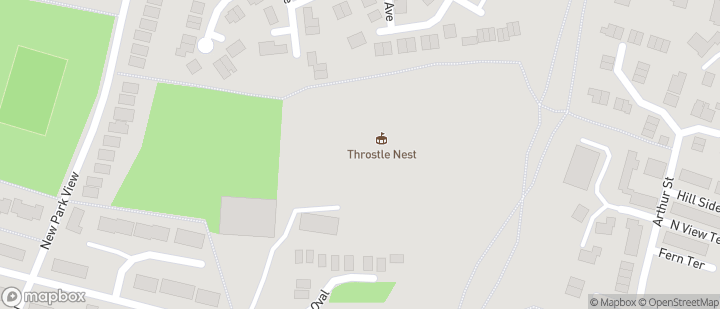 Throstle Nest