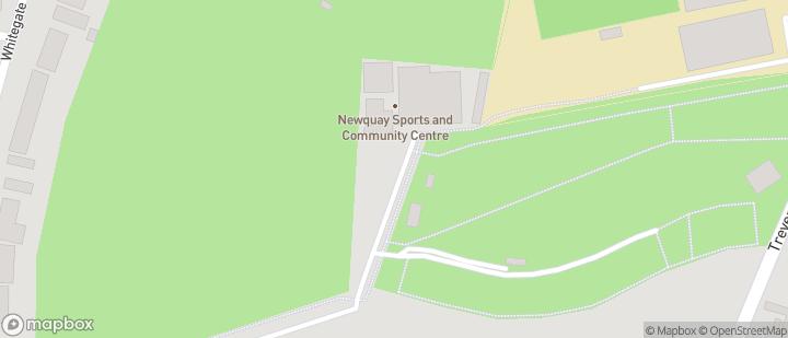 Newquay Hornets RFC