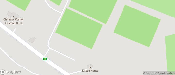 Allen Park Grass