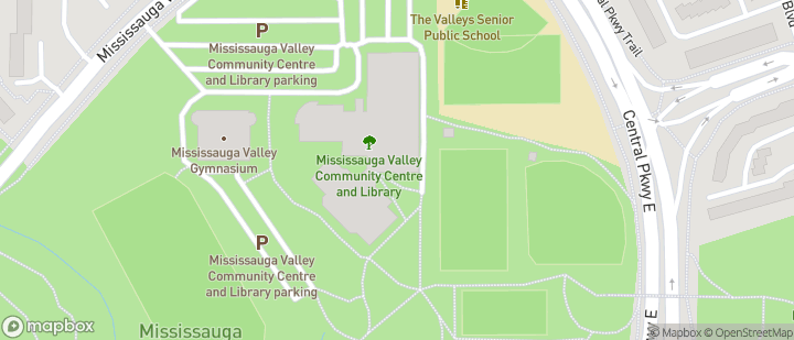 Mississauga Valleys                       (Blues Match Pitch)