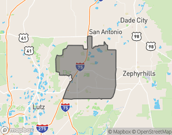 Map of Homes for Sale in Wesley Chapel