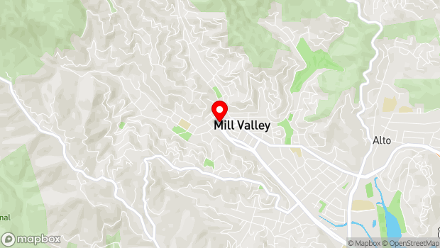 Google Map of 87 Throckmorton Ave., Mill Valley, CA 94941
