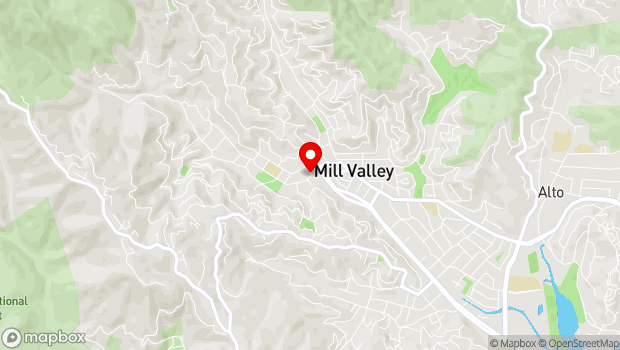 Google Map of 154 Throckmorton Ave., Mill Valley, CA 94941