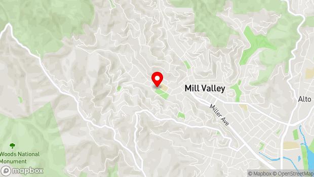 Google Map of 375 Throckmorton Ave., Mill Valley, CA 94941