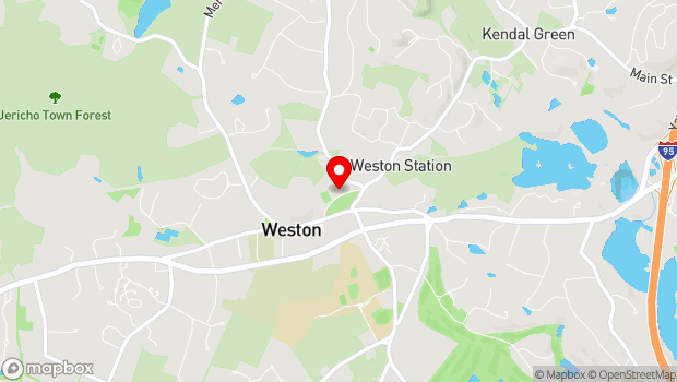 Google Map of 11 Town House Road, Weston, MA 02493