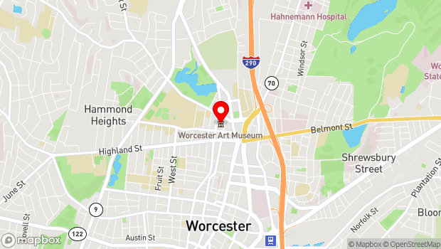 Google Map of 55 Salisbury Street, Worcester, MA 01609