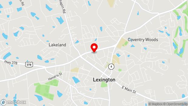Google Map of 231 Fox Street, Lexington, SC 29072