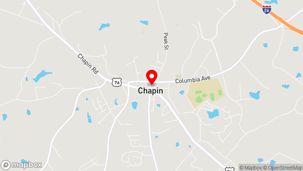 Google Map of 102 Lexington Ave, Chapin, SC 29036