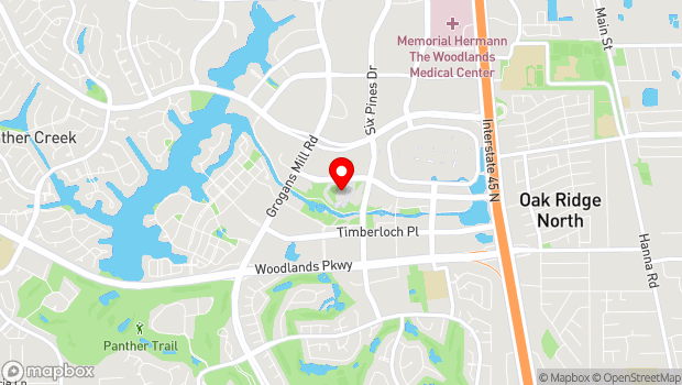 Google Map of 2005 Lake Robbins Drive, Spring, TX 77380