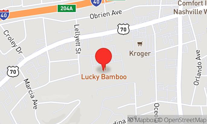 Lucky Bamboo China Bistro