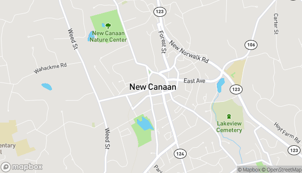 Mapa de 155 Elm Street en New Canaan