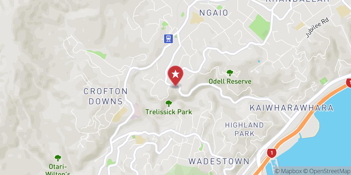 Mapbox Map of 174.77272837135075,-41.256537520690365