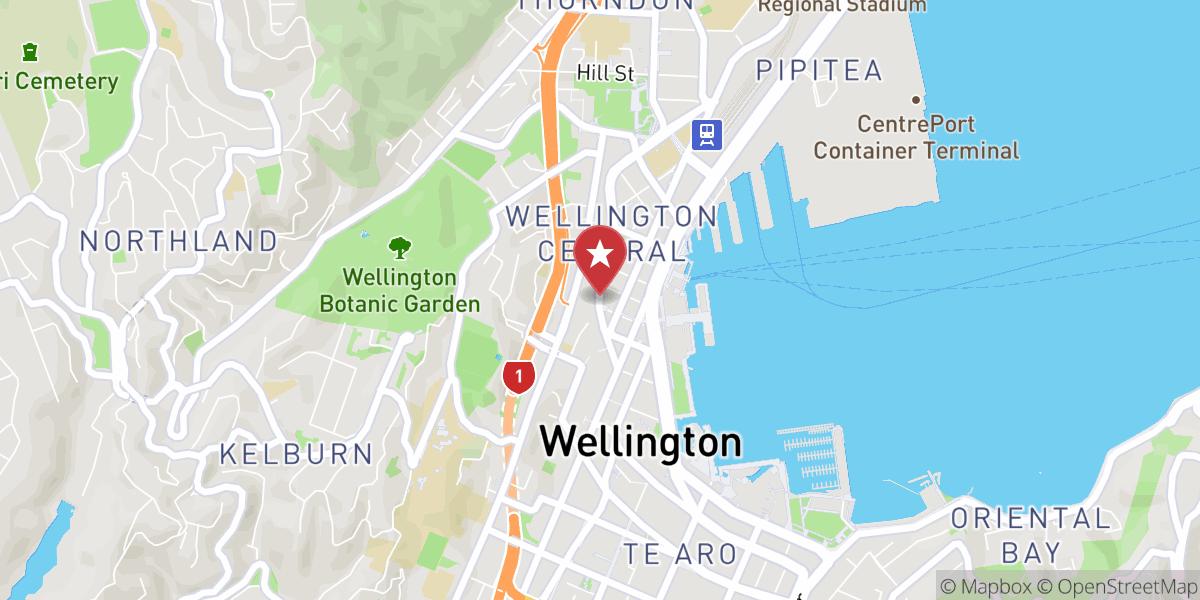 Mapbox Map of 174.7754733597072,-41.28422906018993