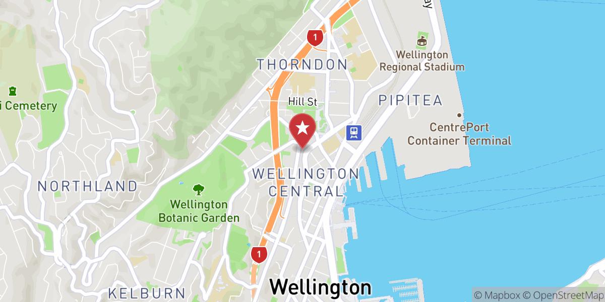Mapbox Map of 174.77569462137086,-41.28007279629892