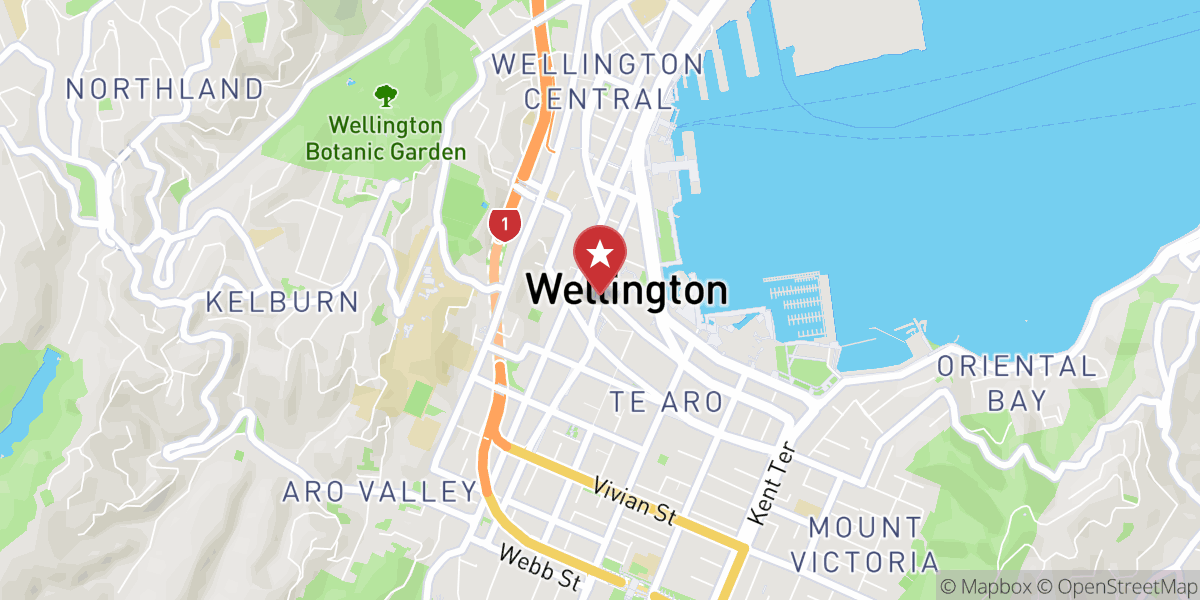 Mapbox Map of 174.77607076130516,-41.28913570450223