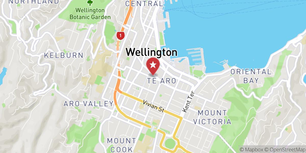 Mapbox Map of 174.77747000907686,-41.29187360710586