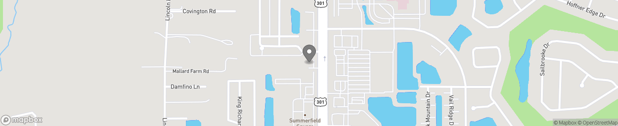 Map of 13029 US Highway 301 South in Riverview