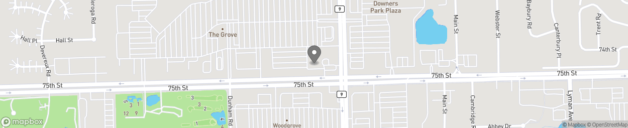 Map of 1202 W 75th St in Downers Grove