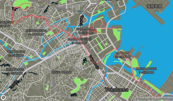 Run | 2011-01-23_run1h29m25s18_6km