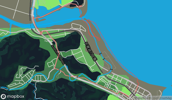 Run | 2019-06-11_run43m29s8_15km