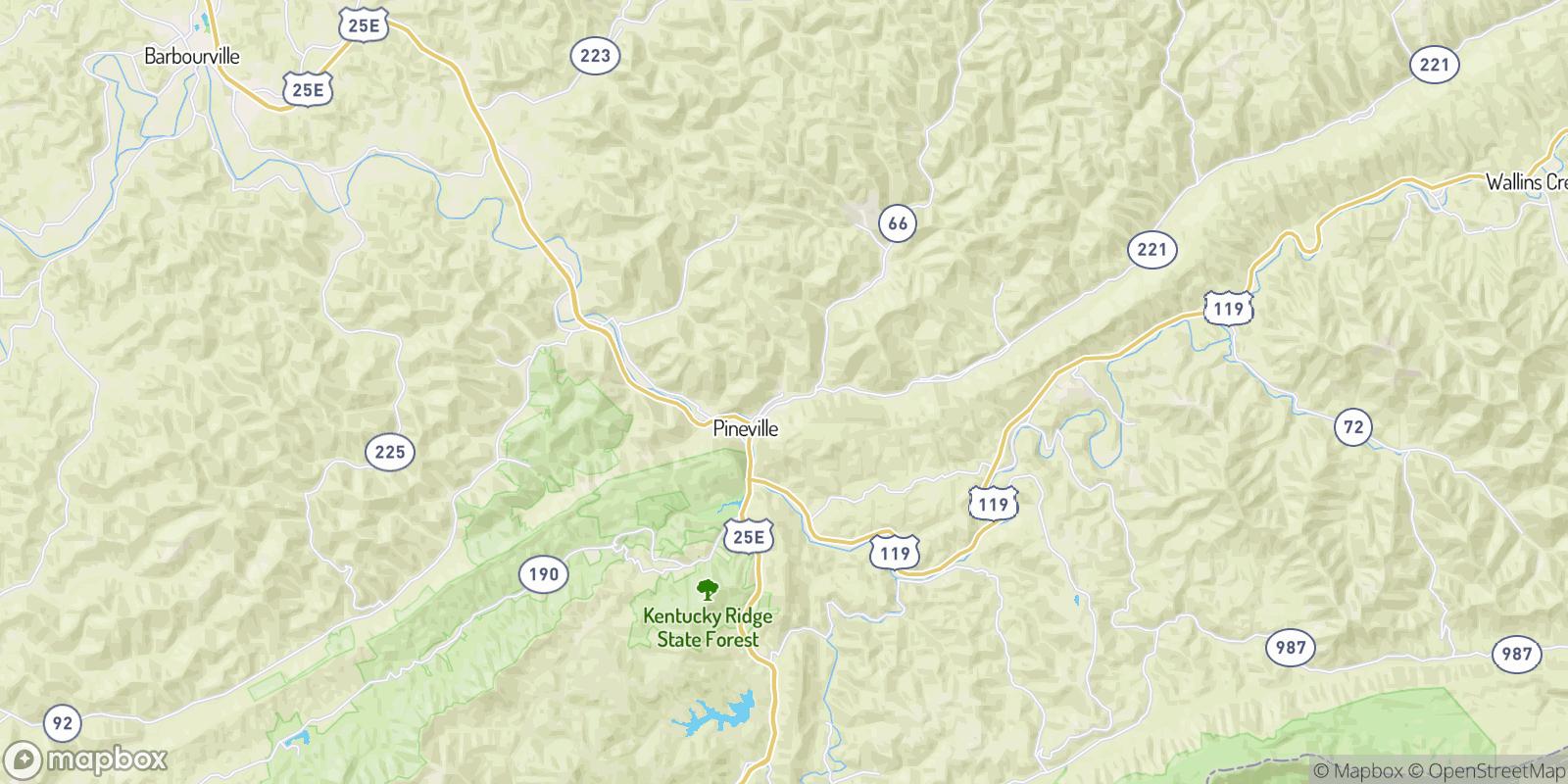 The best camping near Dorton Branch, Kentucky