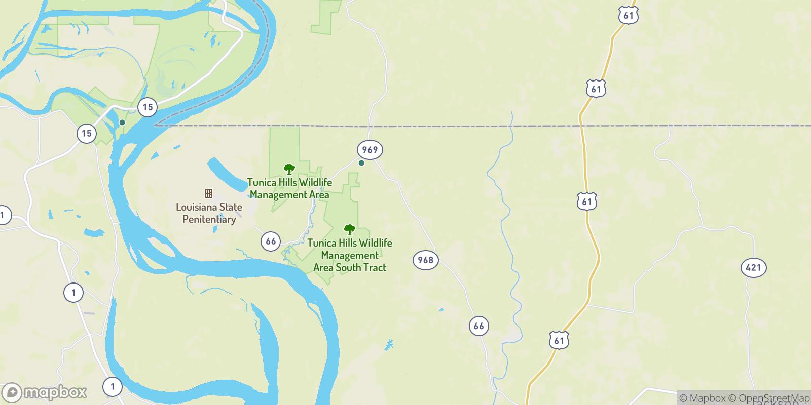 The best camping near Turnbull, Louisiana